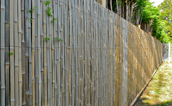 wire mesh fencing with bamboo
