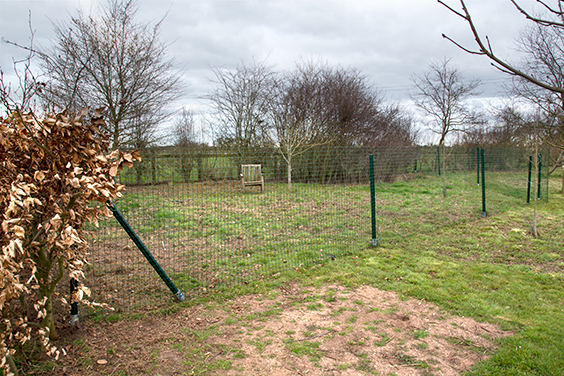 free-ranging-chicken-fencing